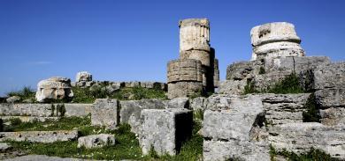 OUR AREA - Paestum